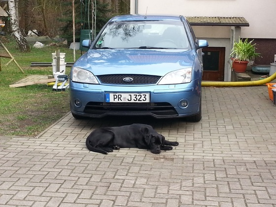 Mein Auto anfang 2014